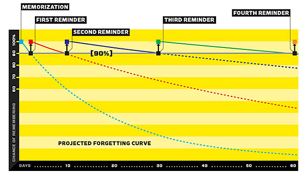 EN Projected forgetting curve-1