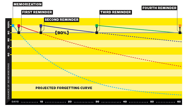 EN Blog What is the forgetting curve and how to fight it
